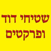 שטיחי דוד ופרקטים