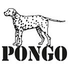 פונגו - הדפסה על חולצות
