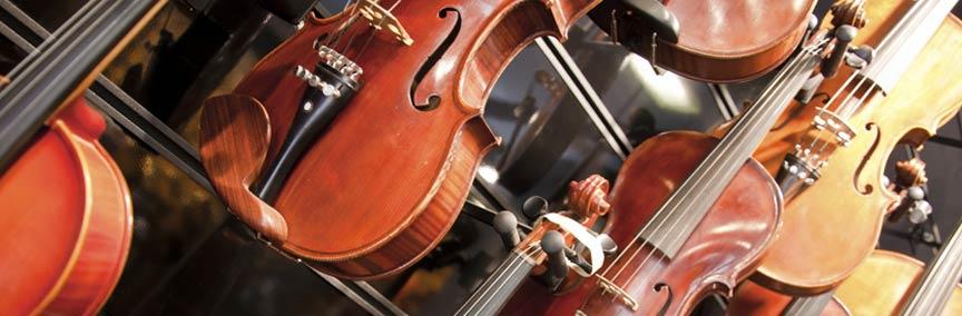 וינשטיין אמנון בונה כינורות
