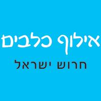 ישראל חרוש -אילוף כלבים