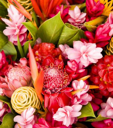 מחירון פרחים