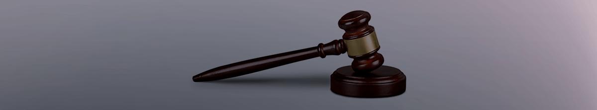 משפט מנהלי ורשויות מקומיות - תמונת אווירה