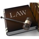 גם לתושב הקטן יש כוח: הרשויות המקומיות והמשפט המנהלי