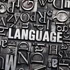 לדבר בשפה שלכם: שירותי תרגום לעורכי דין