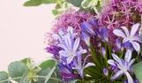 סידור פרחים לאירועים