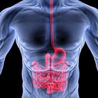 מחלות ובעיות במערכת העיכול