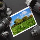מצלמות סטילס ומצלמות וידאו - האם תיקון מצלמות משתלם?