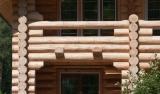 סוגים של בתי עץ