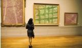 גלריות ציורים