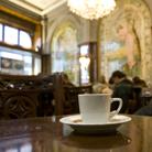 בר קפה לאירועים - בריסטה מיומן וקפה משובח לאירוע מוצלח