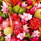 ורד לקיץ יקינתון לחורף: מילון הפרחים לכל עונות השנה
