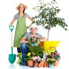 כלי גינון - כל מה שגנן מתחיל מוכרח, כדי שהגינה תפרח