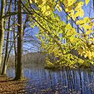 מחפשים גן לאומי או שמורת טבע? המדריך שכל אחד צריך