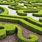 גן שלנו מה נחמד הוא: המדריך לתכנון ועיצוב גינות