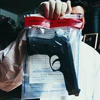 מדריך לנבוך - מדריך להוצאות רשיון נשק