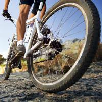 אז מה נכון להגיד - אופניים חשמליים או אופניים חשמליות?