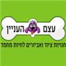 עצם העניין בתל אביב