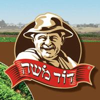 """ישובי חבל מעון-אגודה חקלאית שיתופית לפיתוח אזורי בע""""מ"""