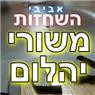 אביבי השחזות משורי יהלום / וידיה