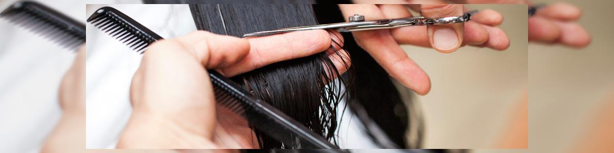 עיצוב שיער מלי - תמונה ראשית
