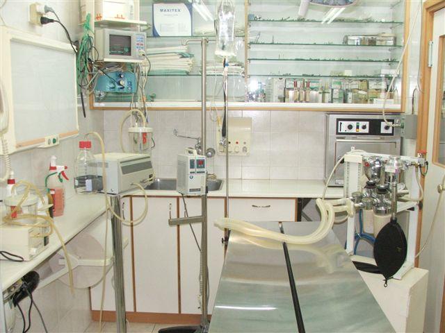 חדר ניתוח לבעלי חיים