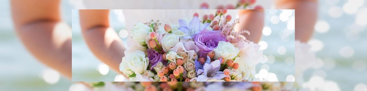 אלף ממלכת הפרחים - תמונה ראשית