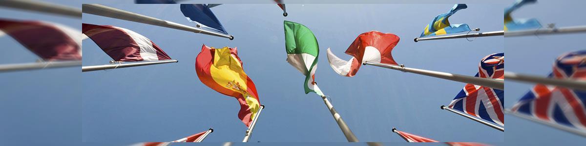 """א. כדורי דגלים וסמלים בע""""מ - תמונה ראשית"""