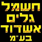 """חברת חשמל גלים אשדוד (1996) בע""""מ"""
