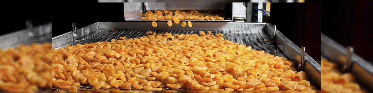 """""""כפיר"""" תעשיות מזון יבנה - תמונה ראשית"""