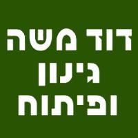 דוד משה גינון ופיתוח