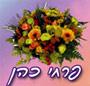 פרחי כהן - תמונת לוגו