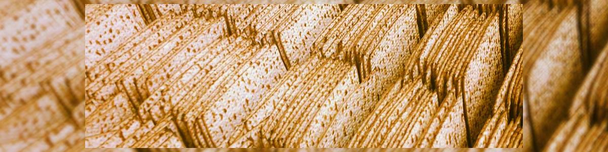 """מצות יהודה משה לודמיר ובניו בע""""מ - תמונה ראשית"""