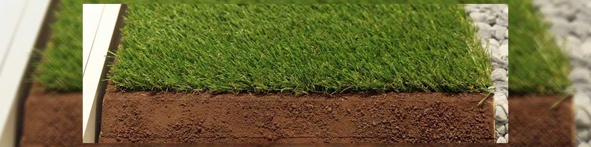 פניני דשא - תמונה ראשית