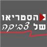 הסטריאו של צביקה - תמונת לוגו