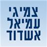 פנצ'ריית עמיאל אשדוד - תמונת לוגו