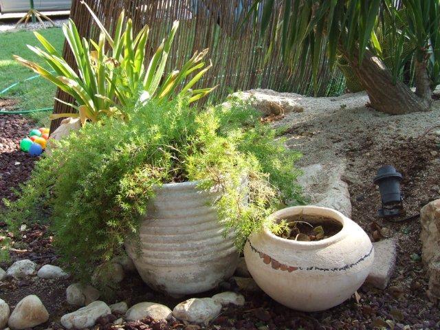 אביזרי נוי לגינה