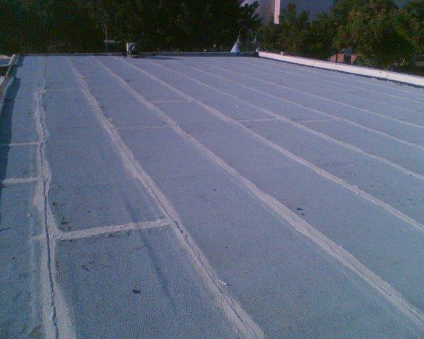 שירות זיפות גגות