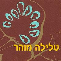 מוהר טלילה - ארטל עיצוב