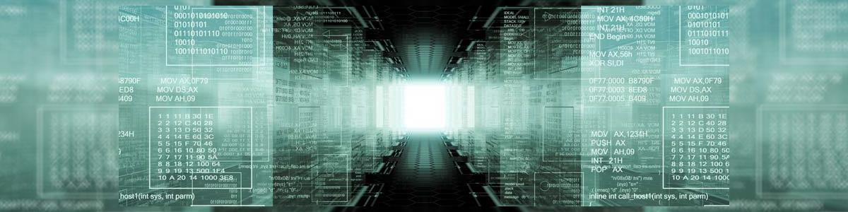 """טלדן מערכות מידע בע""""מ - תמונה ראשית"""