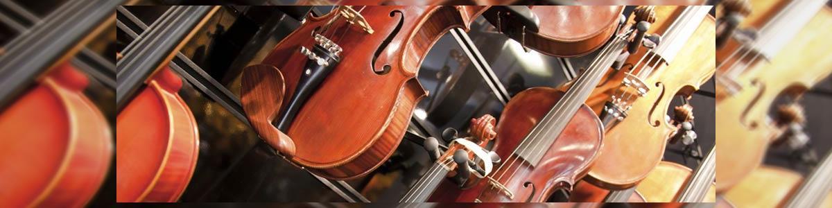וינשטיין אמנון בונה כינורות - תמונה ראשית