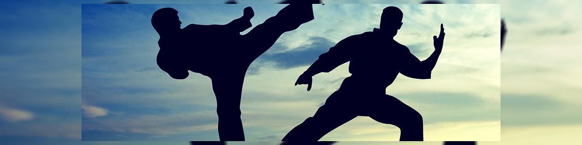 """בי""""ס לקרטה - שלום אביטן - תמונה ראשית"""