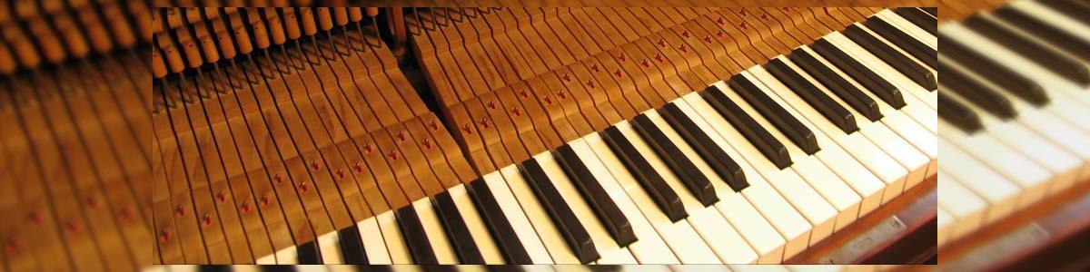 פיאנו מיוזיק-כלי נגינה - תמונה ראשית