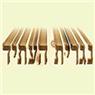 נגרית העתיד - תמונת לוגו