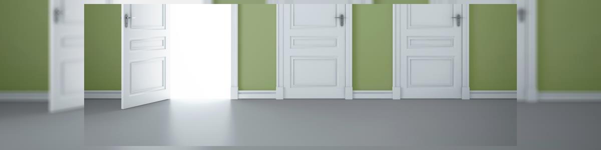 דלתות פלדה זה אמירה - תמונה ראשית