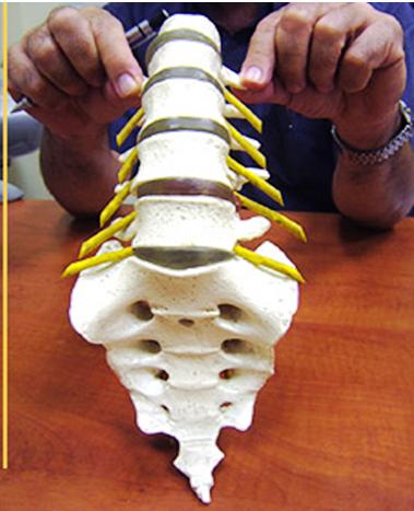 אבחנה וטיפול בבעיות גב