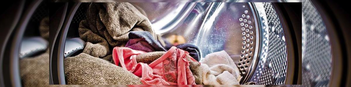 מכבסת אור - תמונה ראשית