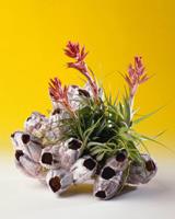 סידורי פרחים מלאכותיים
