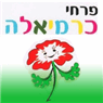 פרחי כרמיאלה