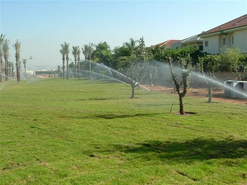 פארק כפר סבא עם דשא מוכן געש