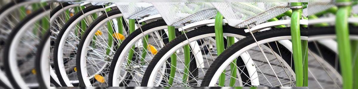 ענק האופניים - תמונה ראשית